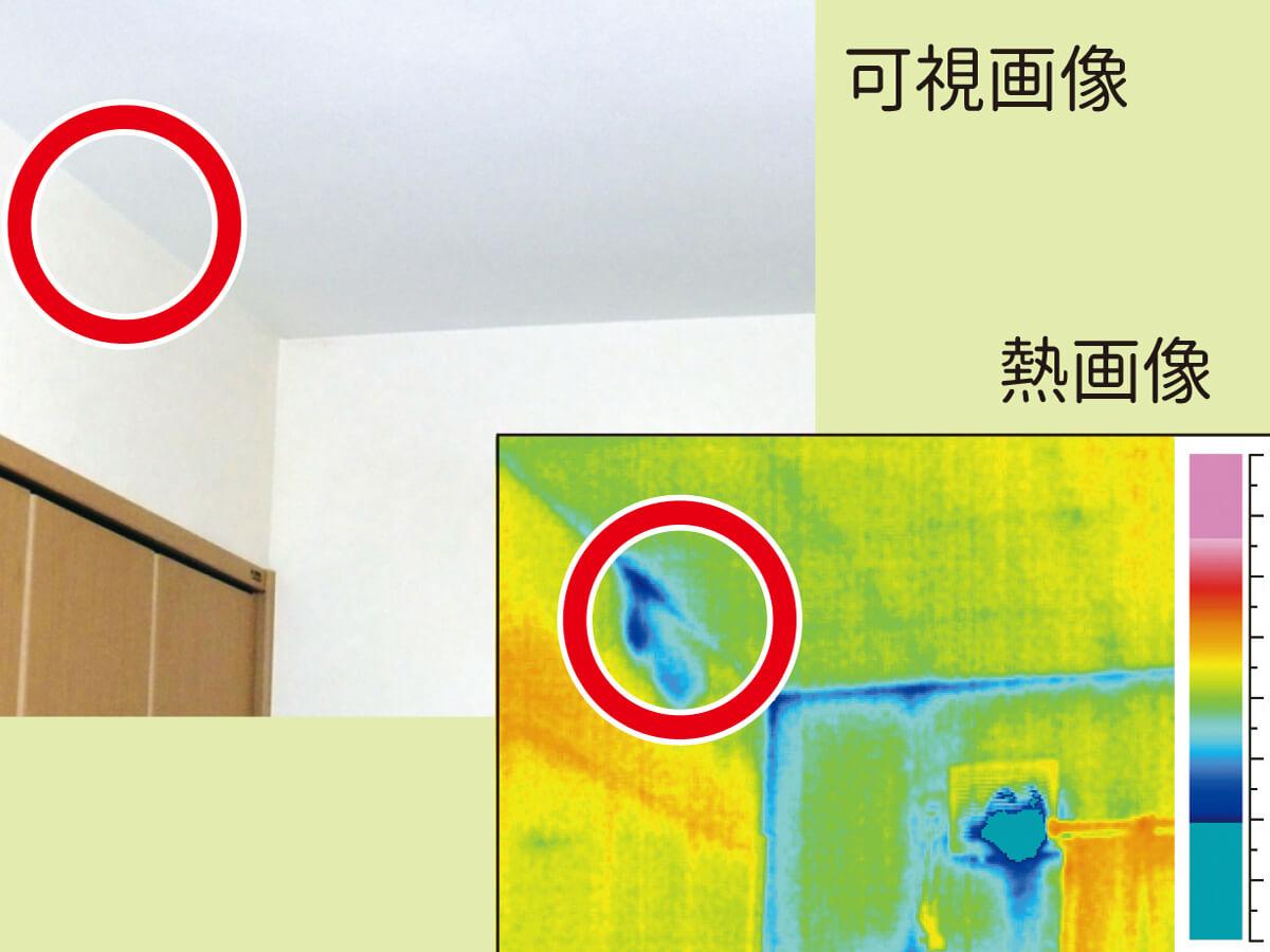 INDIの漏水診断〜赤外線調査